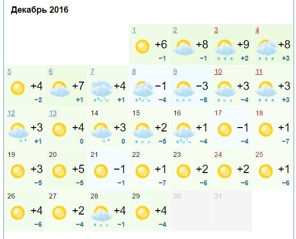 погода на декабрь 2016 кострома моллюсков природе жизни