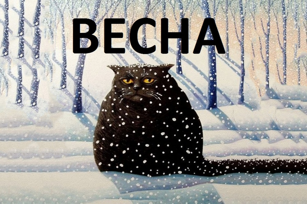 Зима вернулась открытки, открыток