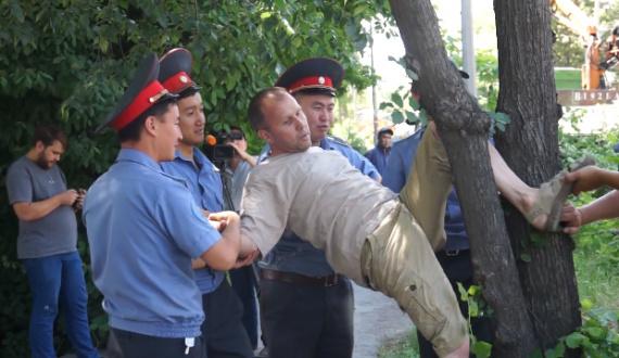 Вырубка деревьев на ул. Токтоналиева сопровождалось акциями протеста