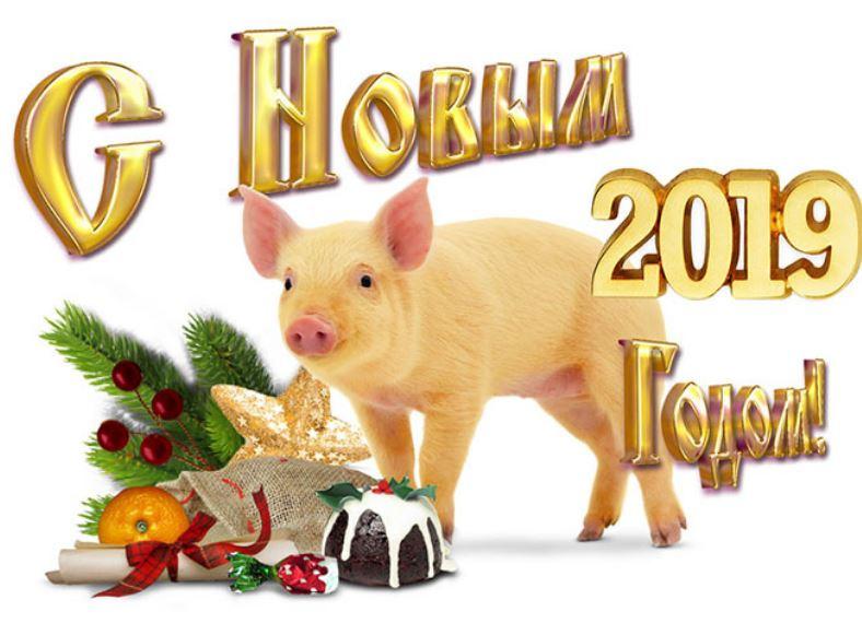 С новым годом год кабана открытка, спасатель