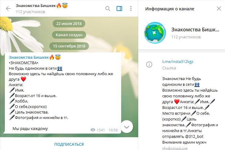 телеграм канал веб модели